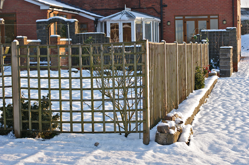 Snowy view of the rear garden